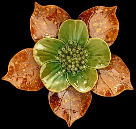 Ribbonwood flower Soda Green Heart Leaf Soda Yellow