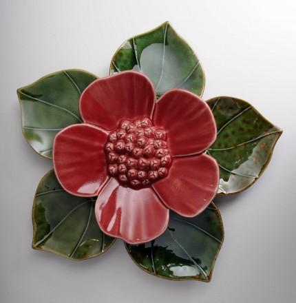 Medium Ribbonwood Flower Red Soda Green Heart Leaves
