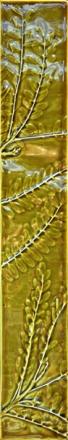 Long Box Kowhai Leaf