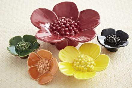 Ribbonwood Flowers