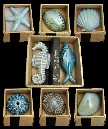 Boxed sea life