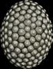 WIPO_36