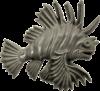 Wall Lion Fish